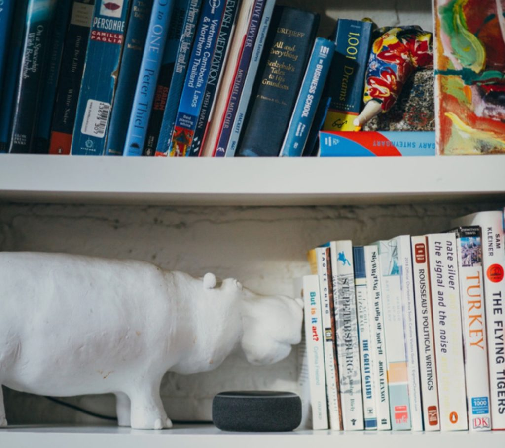 Echo Dot on a bookshelf